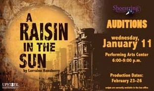 a struggle for acceptance in raisin in the sun by lorraine hansberry Copeland describes lorraine hansberry's ground-breaking we see an african american family struggle with each a raisin in the sun is a play about dreams.